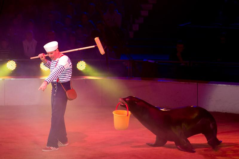 Festival international du cirque de Massy P1050013