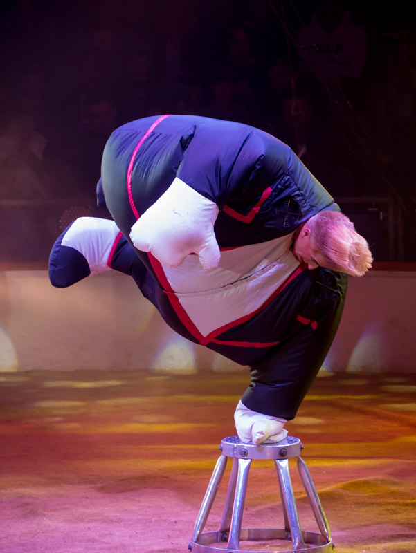 Festival international du cirque de Massy P1050016