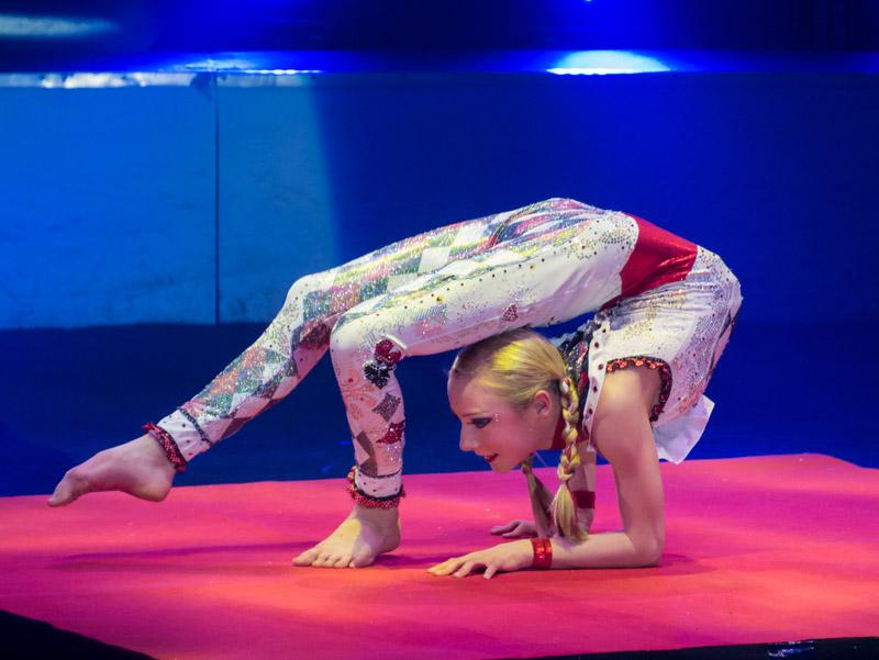 Festival international du cirque de Massy P1050111