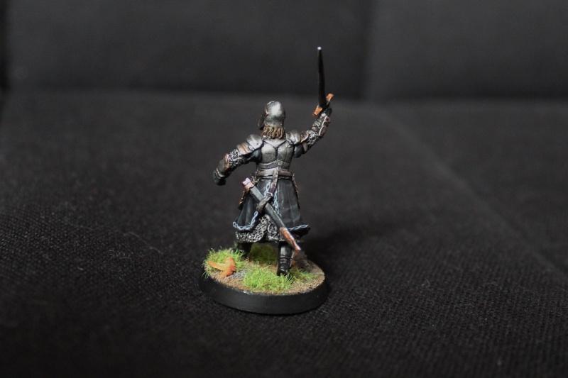 Galerie dadou91 [Rohan, Gondor, Fiefs] - Page 4 Img_3414