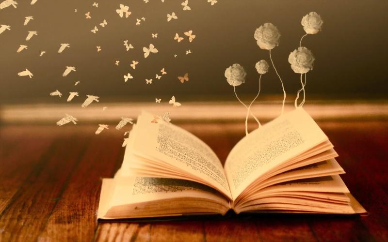 Carnet de lecture de Perle Books-11