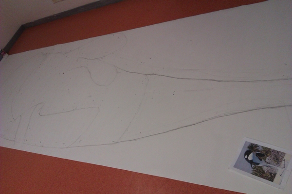 [Information] La taille de l'orque? Imag1211
