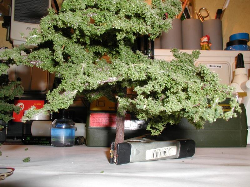 Baumbau- Belaubungsproblem P6200010