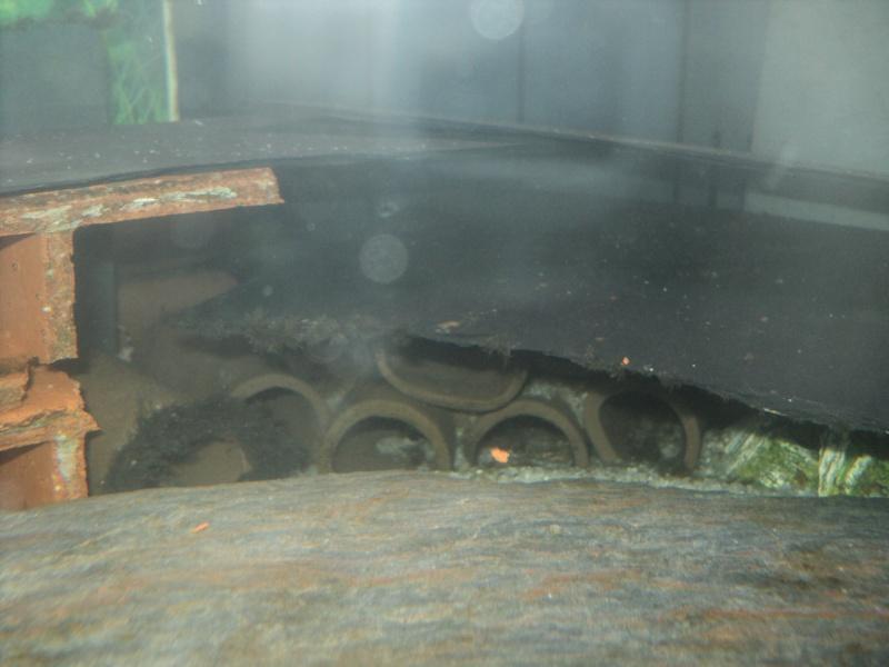 100 litres Hypancistrus Zebra L46 du RIO XINGU! Bac_ri10