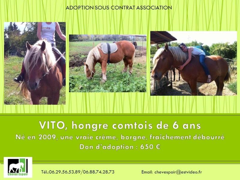 Vito comtois borgne né en 2009 - Page 15 Vito10