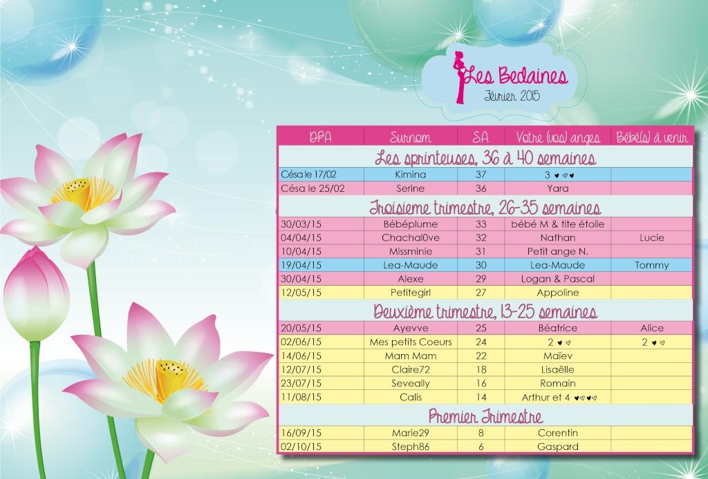 Tableau des bedaines couveuses du 02 au 08/02/2015  Fevrie10