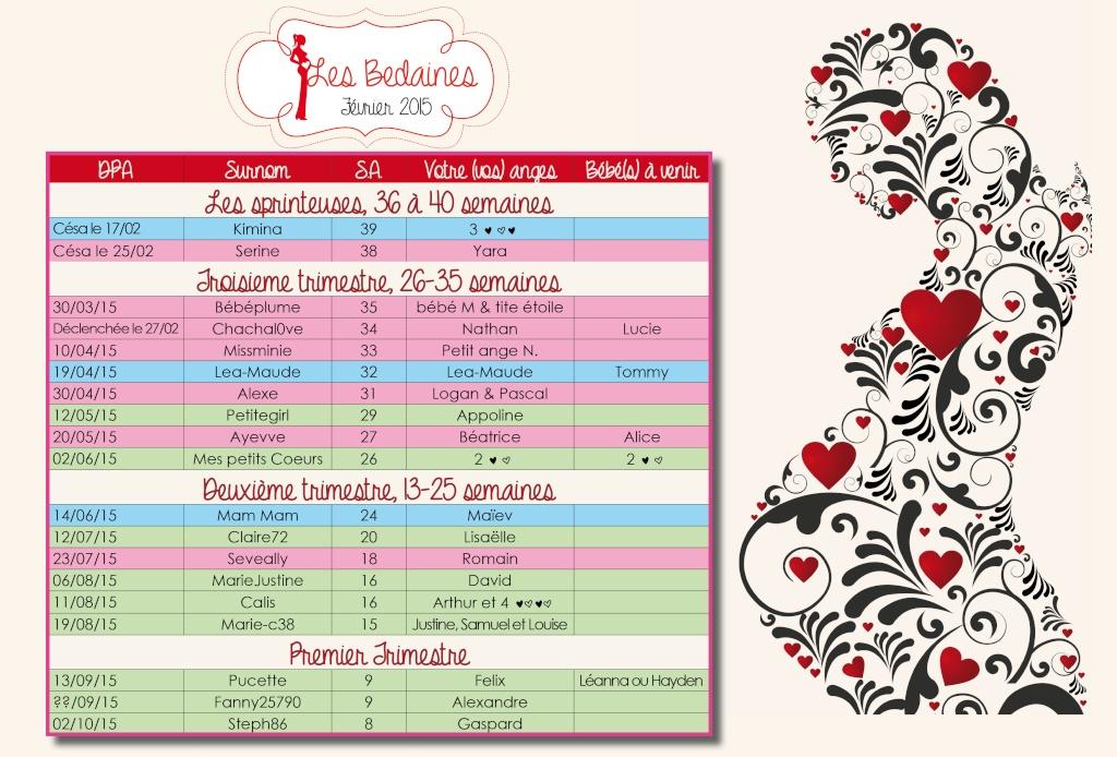 Tableau des bedaines couveuses du 16 au 22/02/2015 Tablea17
