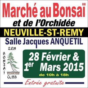 Neuville st remy (59) les 28 février et 1 mars 2015 15022810