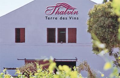 Le vin au Maroc : une histoire de 2500 ans... Vins_310