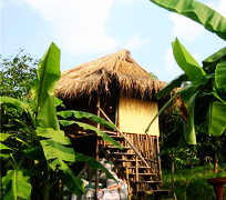 Eco Village of the Day Outhou10