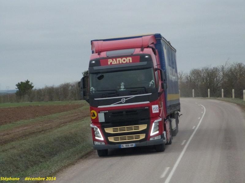 Panon (Groupe Alainé)(Semoy, 45) - Page 2 P1290728