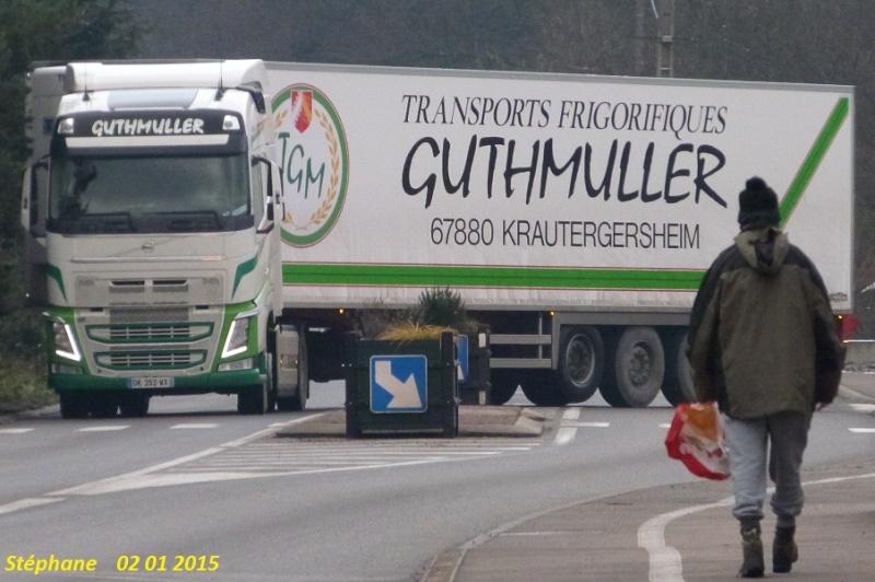 Guthmuller (Krautergersheim) (67) - Page 4 P1290748