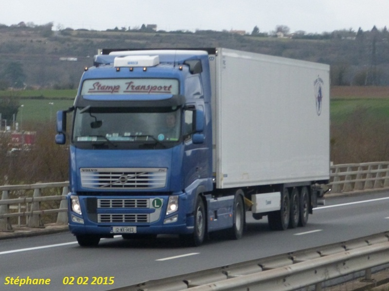 Stamp Transport Limited - Wexford P1300330