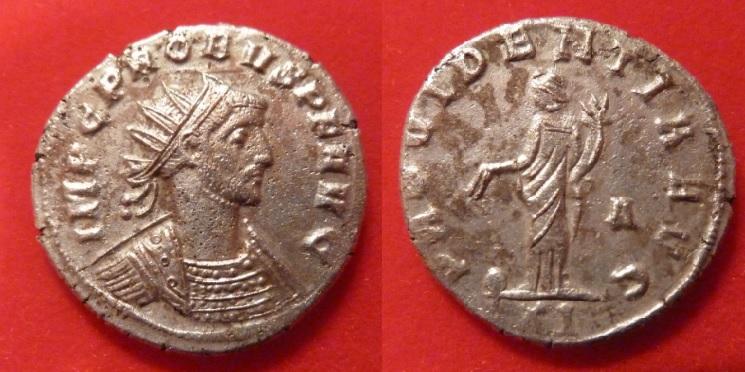 Aureliani suspects Probus11