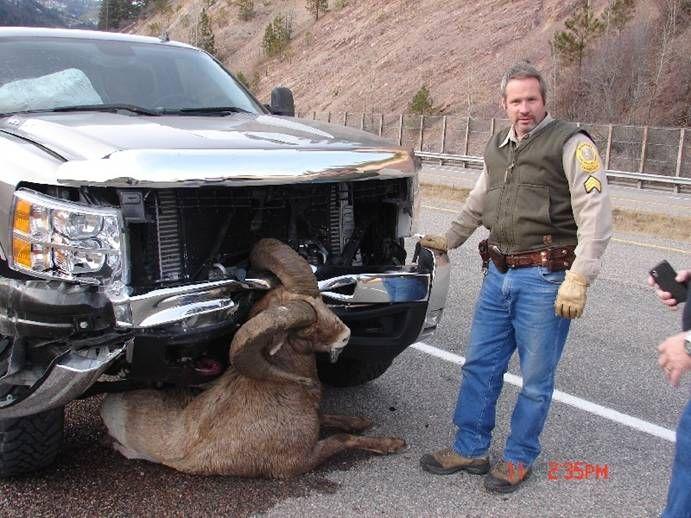La verité Chevrolet vs Dodge Chevy_10