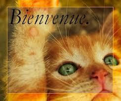 BONJOUR BONJOUR Bienve12