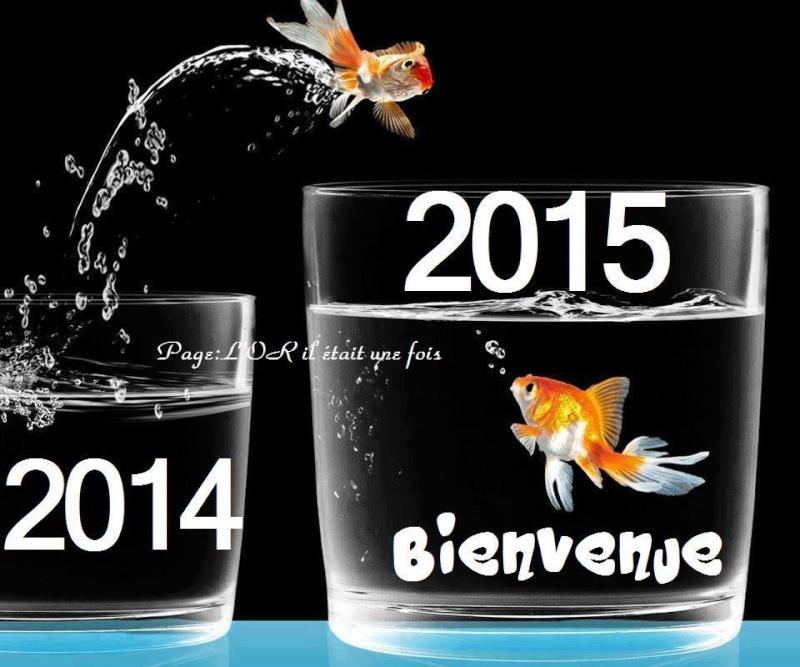 Vœux pour 2015  10882211