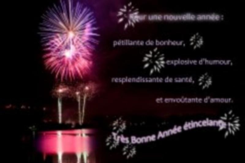 Bonne année 2015 Voeux-12