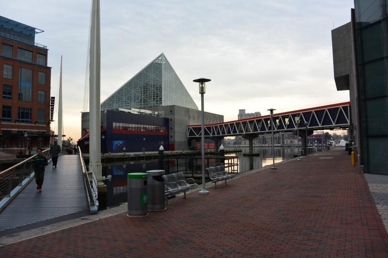 Ma visite à Baltimore Dsc_0914