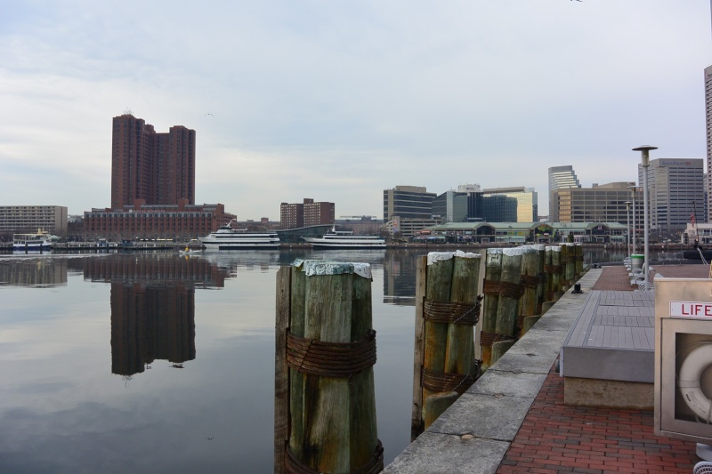 Ma visite à Baltimore Dsc_0920