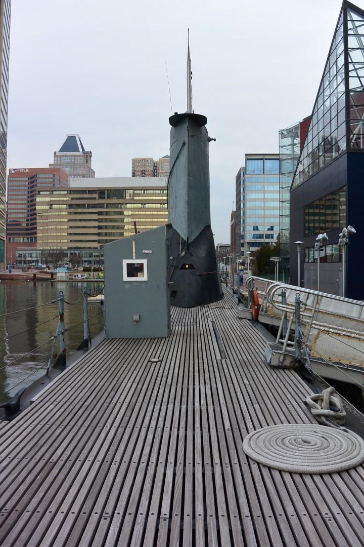 Ma visite à Baltimore Dsc_1013