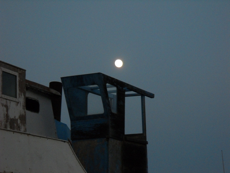 Il topic delle immagini - Pagina 6 Moon10