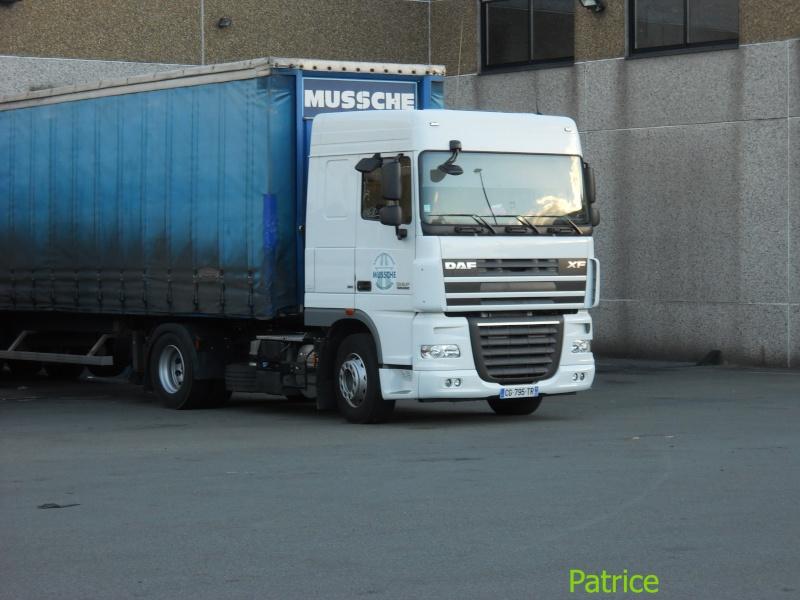 Mussche (Roncq 59) 004_co11