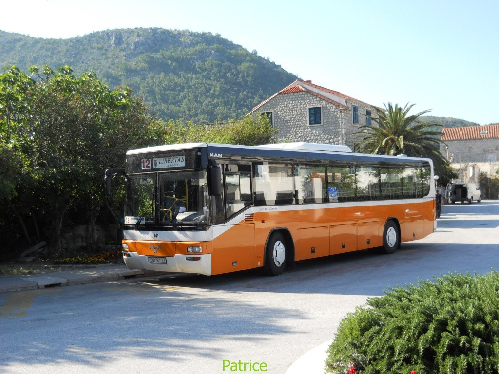 Cars et Bus de Croatie 016_co10