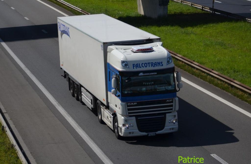 Falcotrans (Malte) 981_co10