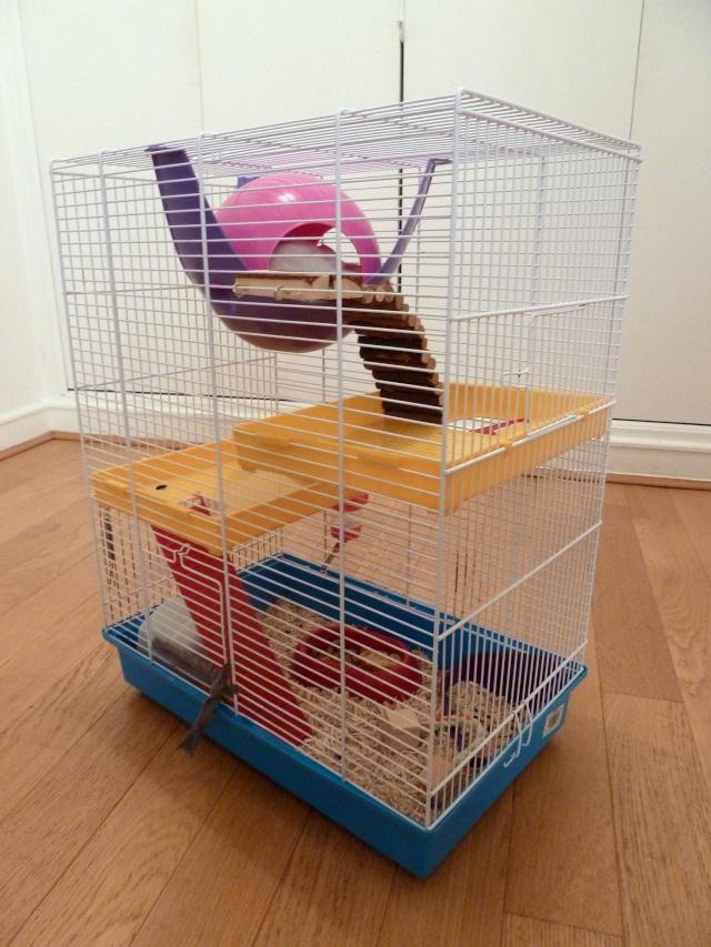 Cage pour une quarantaine de luxe Cage_410