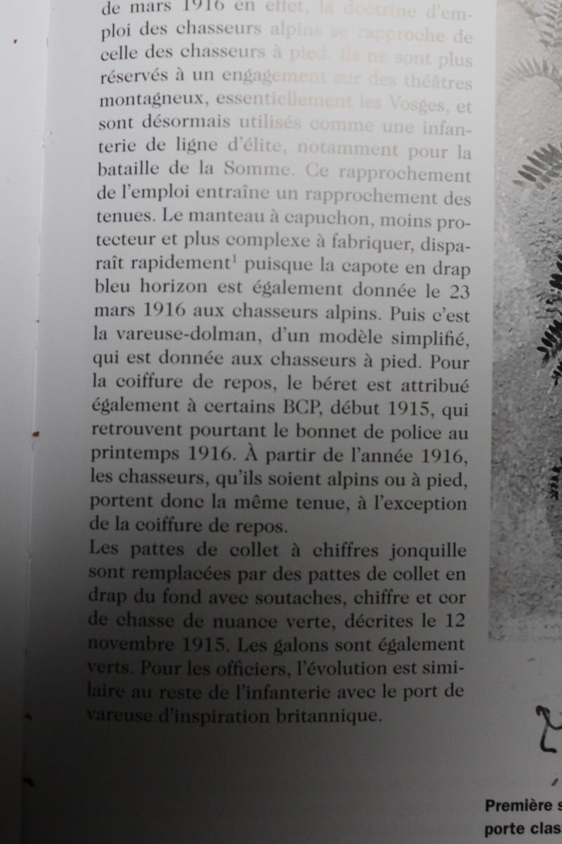 coiffure de repos chez les BCP de 15 à 16 Img_1312
