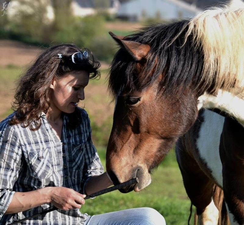 CONCOURS PHOTOS : La St Valentin équine - Page 2 14041712