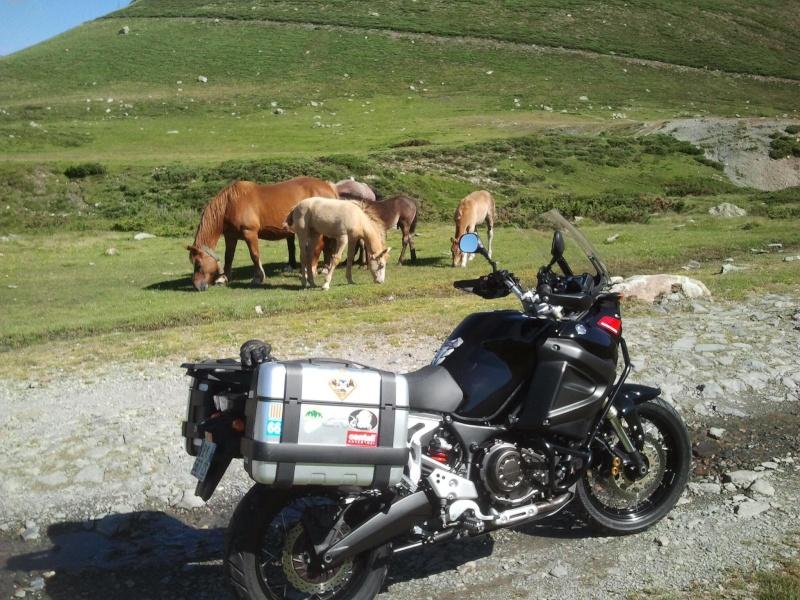 Vos plus belles photos de moto 10514411