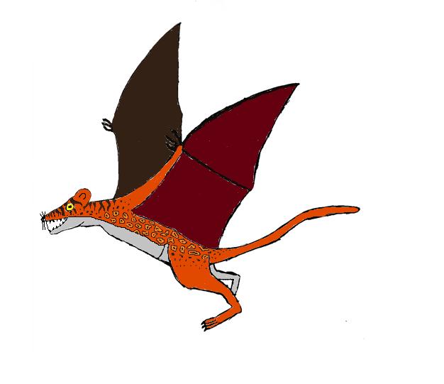 Grosses Fluglemurenkänguru Flying10