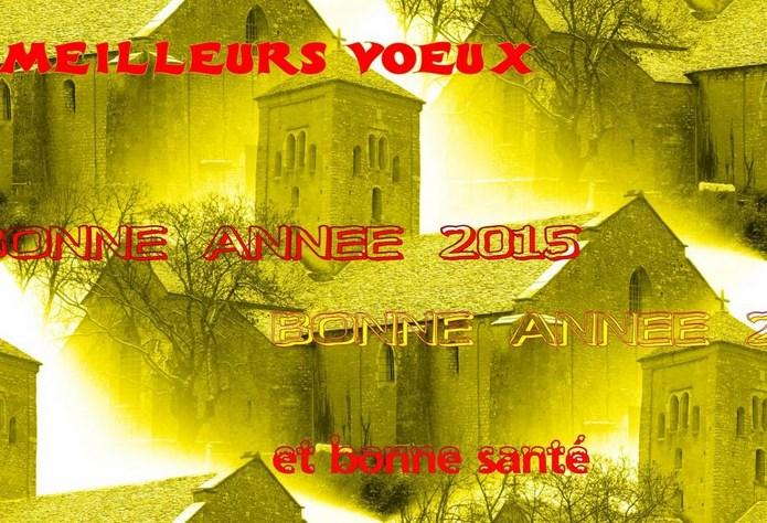 vœux  pour 2015 Pernot10