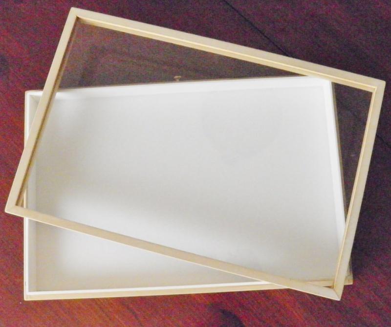 Boites entomologiques P1070010