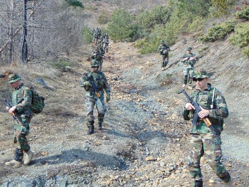 Forces armées moldaves 1039