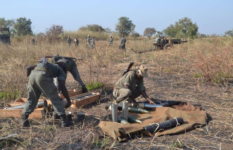 Forces Armées Togolaises / Togolese Armed Forces - Page 2 614