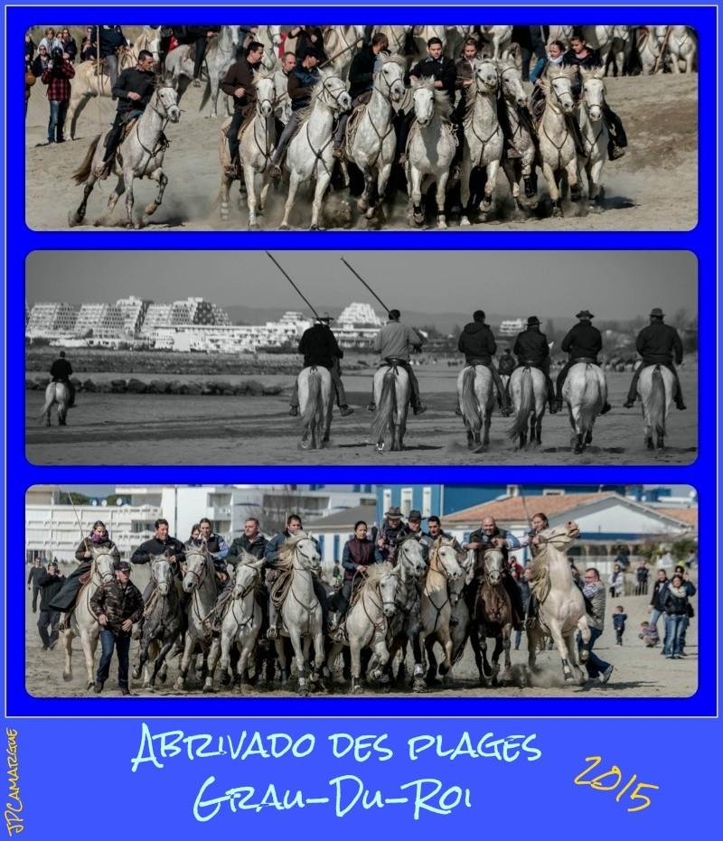 Abrivado des plages , Grau-Du-Roi ( 07/03/2015 ) _dsc1910