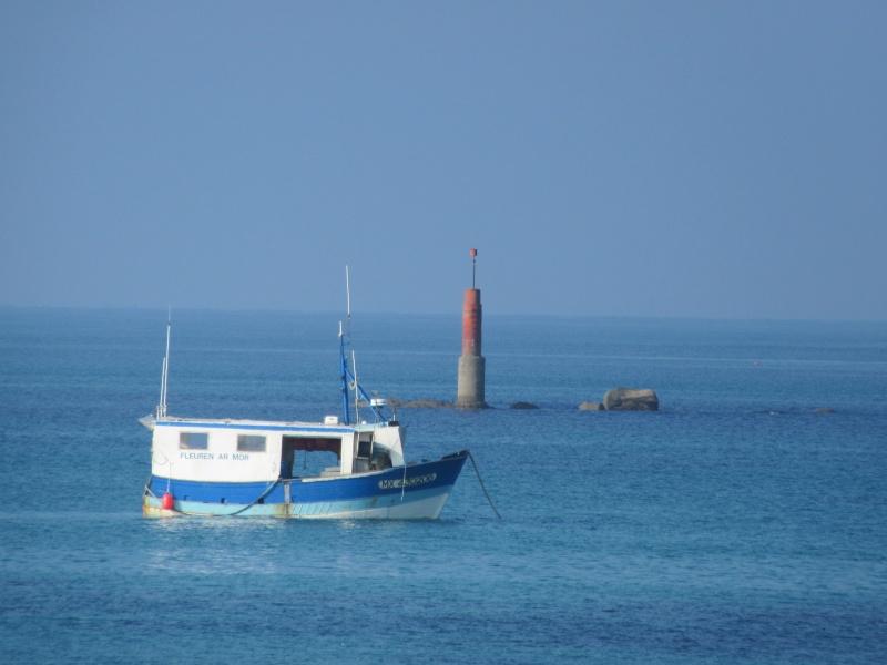 """""""Viendez viendez"""" en Finistère nord pour les vacances !!!! 01310"""