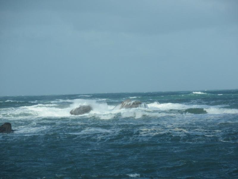 Jour de tempête..... Img_0210