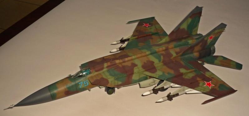 """MiG-25 PD/PDS """"Foxbat"""" (Kitty Hawk) - Page 5 P1090510"""