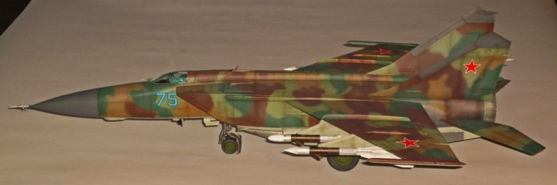 """MiG-25 PD/PDS """"Foxbat"""" (Kitty Hawk) - Page 5 P1090512"""