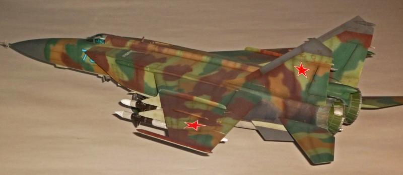 """MiG-25 PD/PDS """"Foxbat"""" (Kitty Hawk) - Page 5 P1090513"""