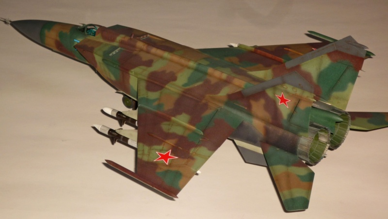 """MiG-25 PD/PDS """"Foxbat"""" (Kitty Hawk) - Page 5 P1090514"""