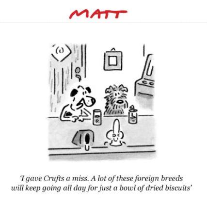 Matt  - Page 2 Captu167