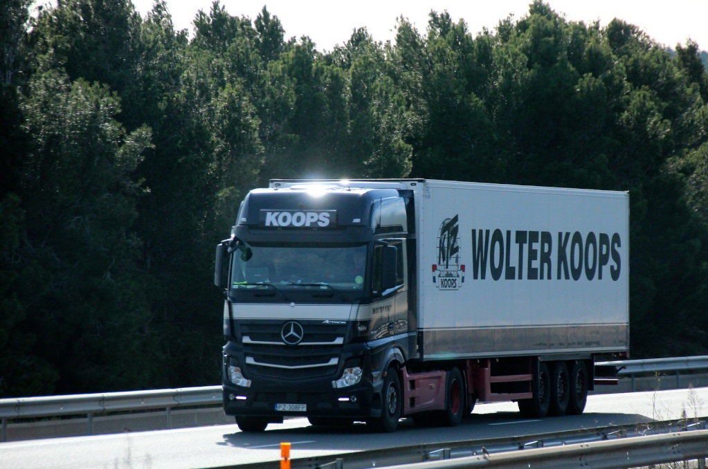 Wolter Koops - Page 3 Img_2335