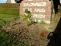 Mon (futur) nouveau jardin 107_2810