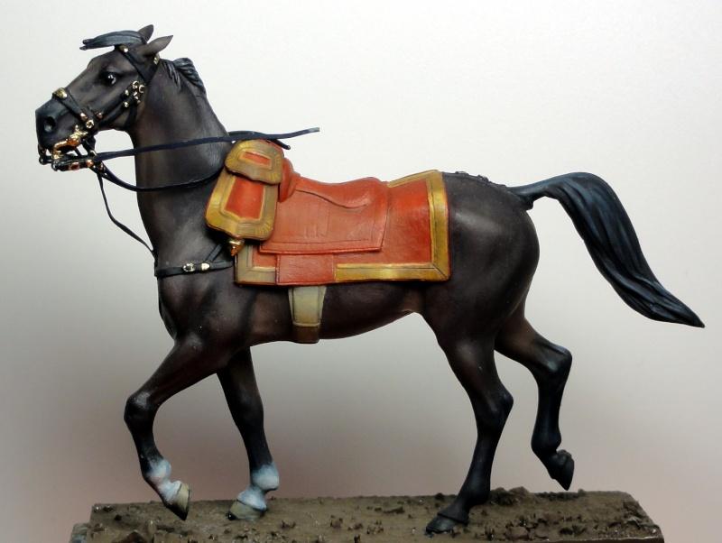 Maréchal Berthier, prince de Neuchâtel de Metal modèles, terminé Dsc05321