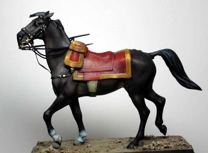 Maréchal Berthier, prince de Neuchâtel de Metal modèles, terminé Dsc05413